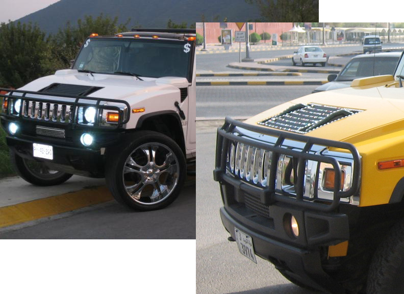 Hummer Sut Double Showoff Grille Grill Brush Guard Black